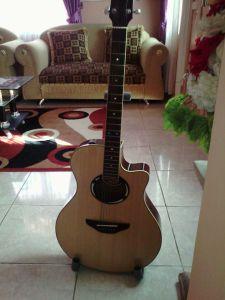 gitar2